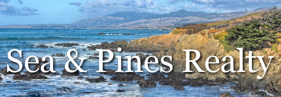 Sea & Pines Realty